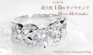 DSC00701のコピー